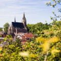 Meisenheim am Glan / Ansicht Schosskirche